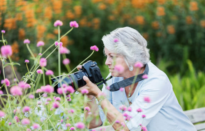 woman using digital camera in garden, senior woman in her 60s in a garden photographing flowers.